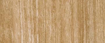 Silky Maple